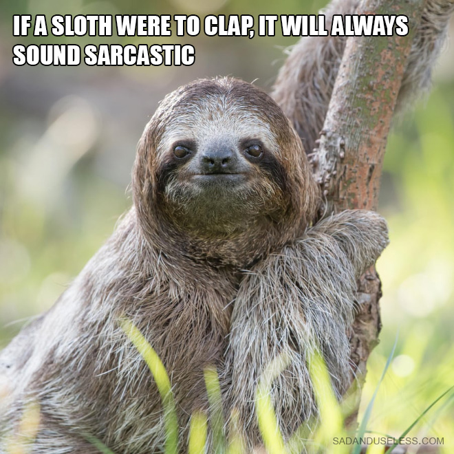 If a sloth were to clap, it will always sound sarcastic.