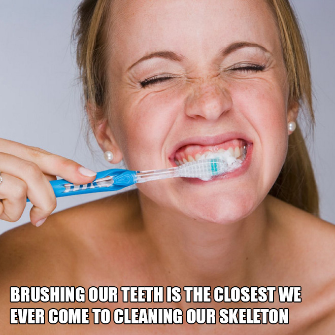 Brushing our teeth is the closest we ever come to cleaning our skeleton.