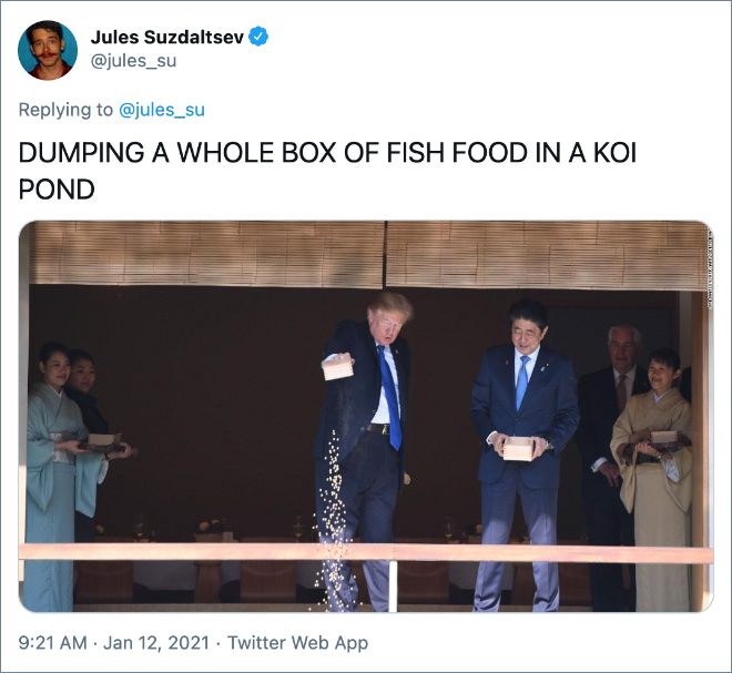 DUMPING A WHOLE BOX OF FISH FOOD IN A KOI POND