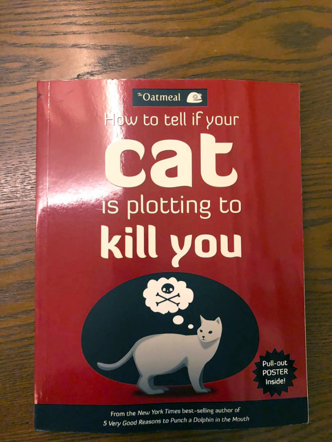 """""""How to Tell If Your Cat Is Plotting to Kill You"""" by Matthew Inman"""