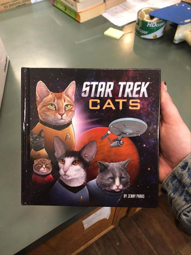 """Star Trek Cats"" by Jenny Parks"