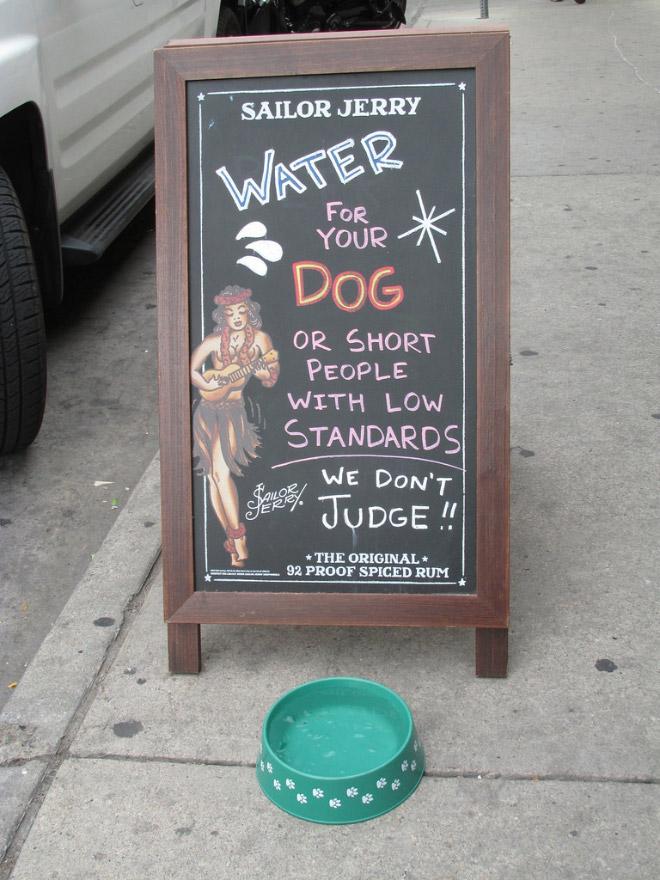 Brilliant bar sign.