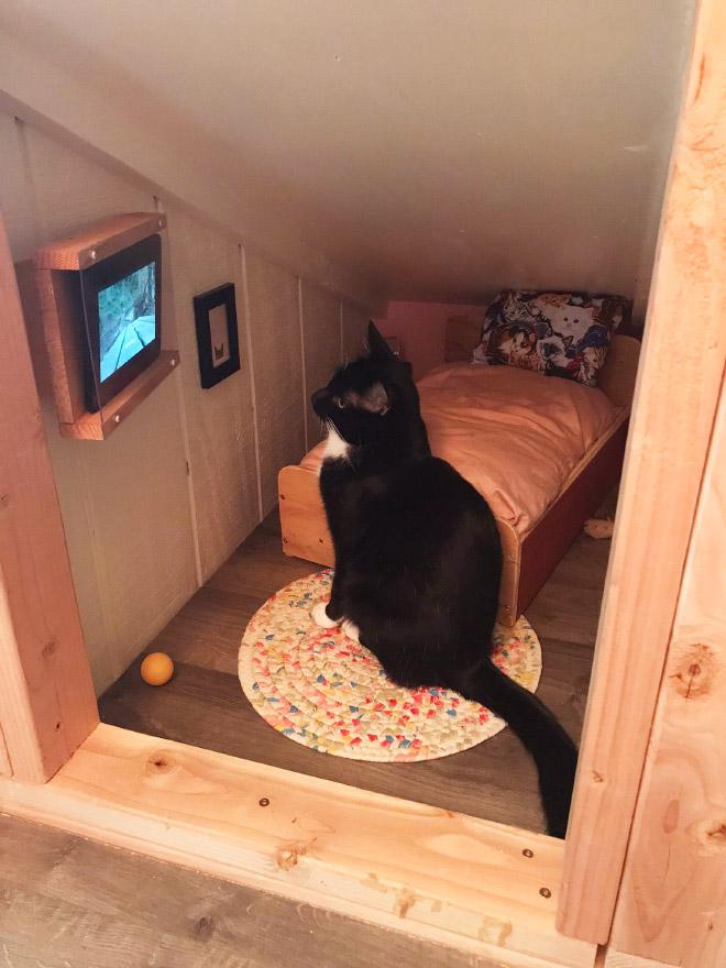 Котка гледа телевизия в спалнята си.