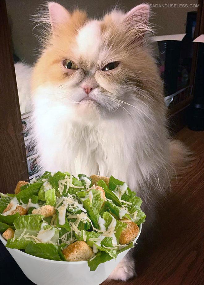Salad? Ewww!