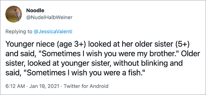 """Younger niece (age 3+) looked at her older sister (5+) and said, """"Sometimes I wish you were my brother."""" Older sister, looked at younger sister, without blinking and said, """"Sometimes I wish you were a fish."""""""