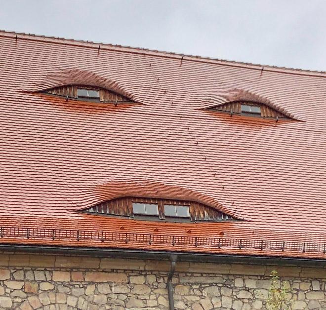 House face.