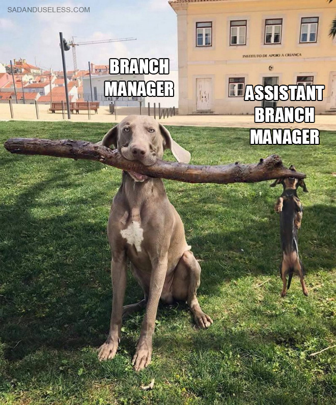 Branch managers.