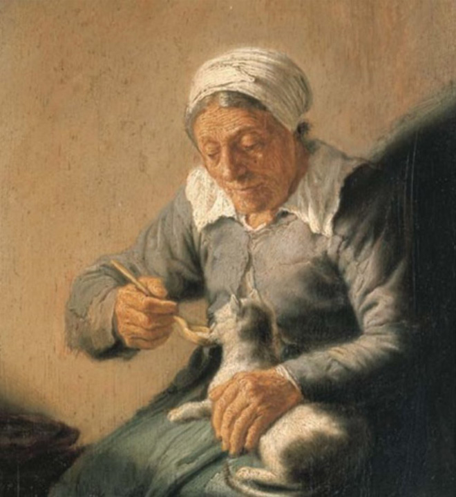 Cuillère à nourrir le chat comme un petit bébé.