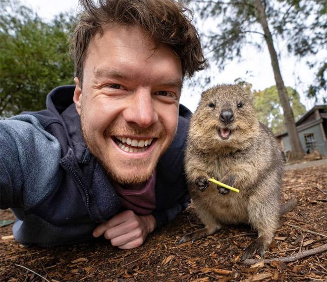 Cute animal selfie.