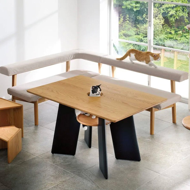 Cat table.
