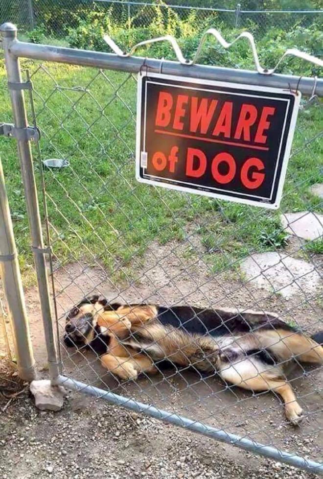 Avoir peur!  Ayez très très peur !