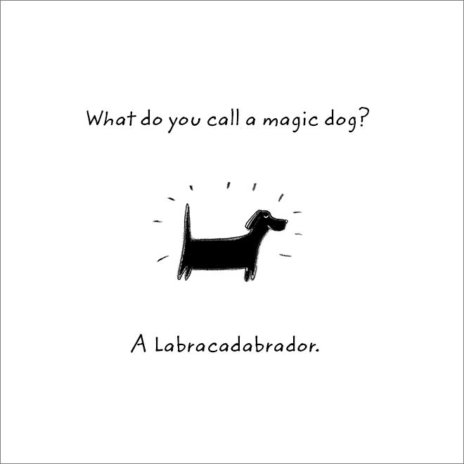 Jeu de mots de chien.