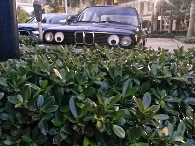 Yeux écarquillés BMW.