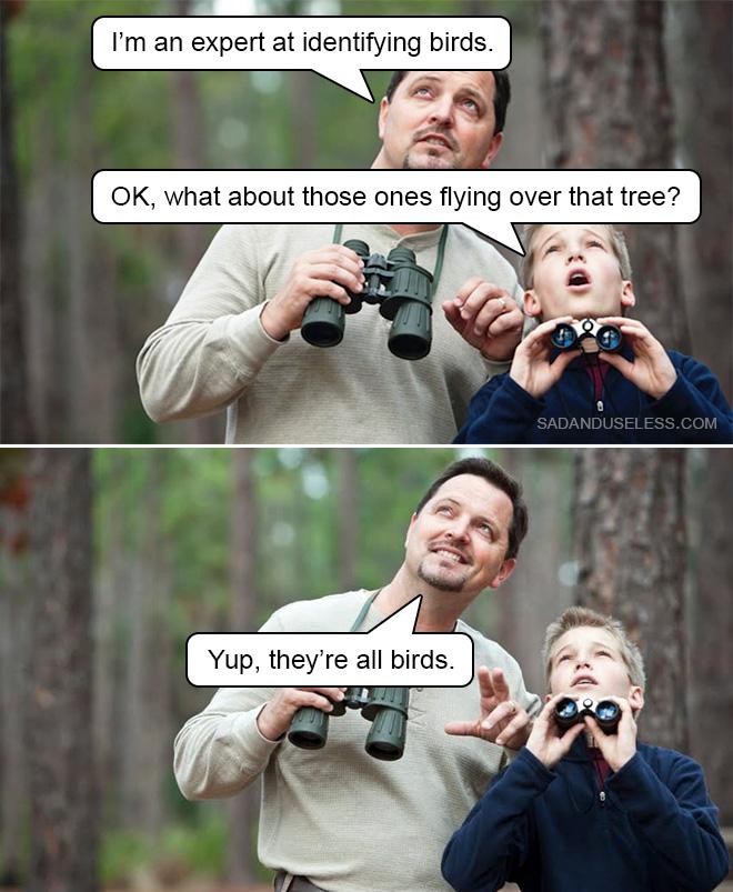 Observation des oiseaux avec papa.
