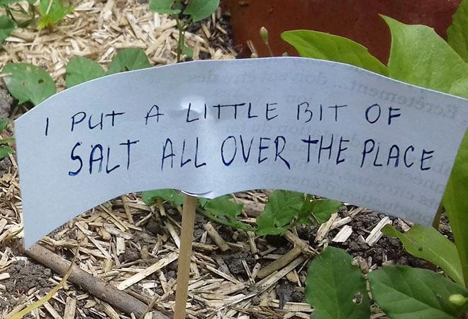 Un signe pour effrayer les escargots.