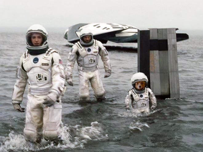 Paddington photoshopped into an iconic movie scene.