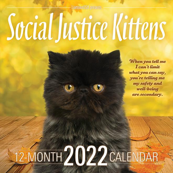 Social Justice Kittens 2022 calendar.